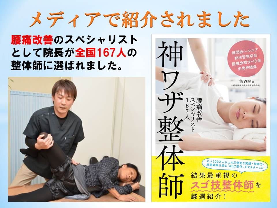 iwatasi •uperhuman skill seitai