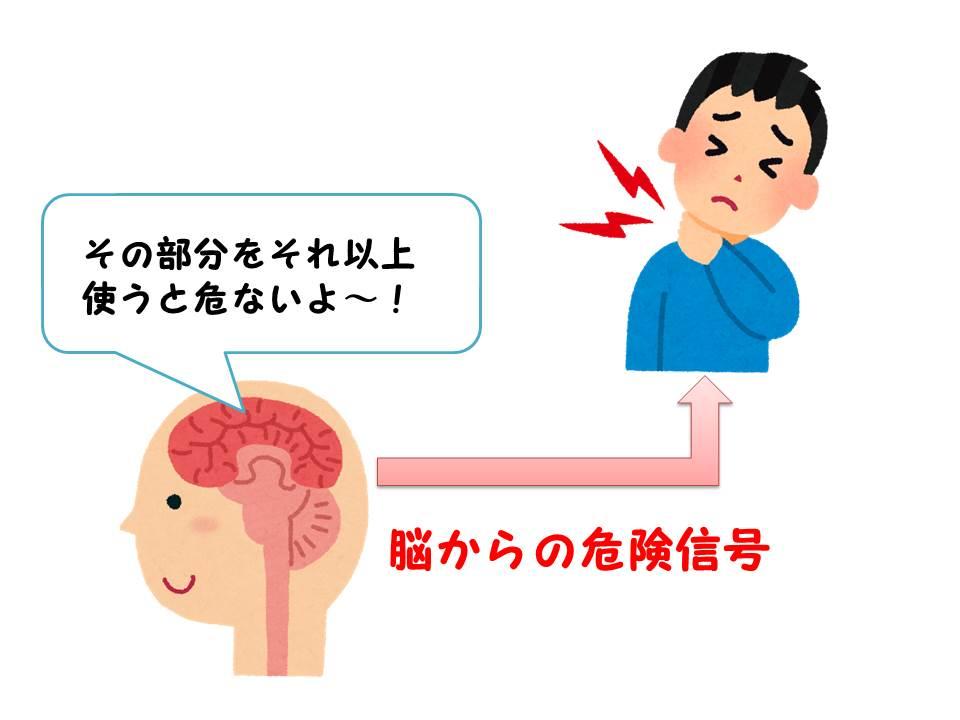 脳からの危険信号が痛み